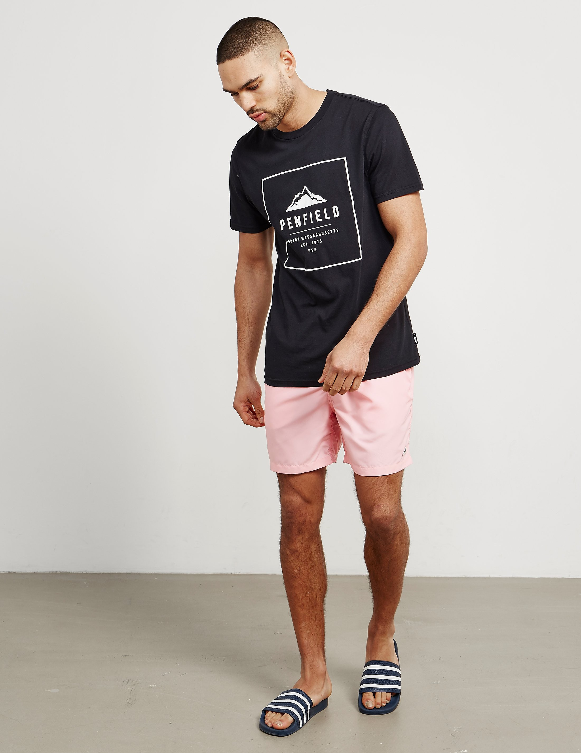 Penfield Seal Swimmer