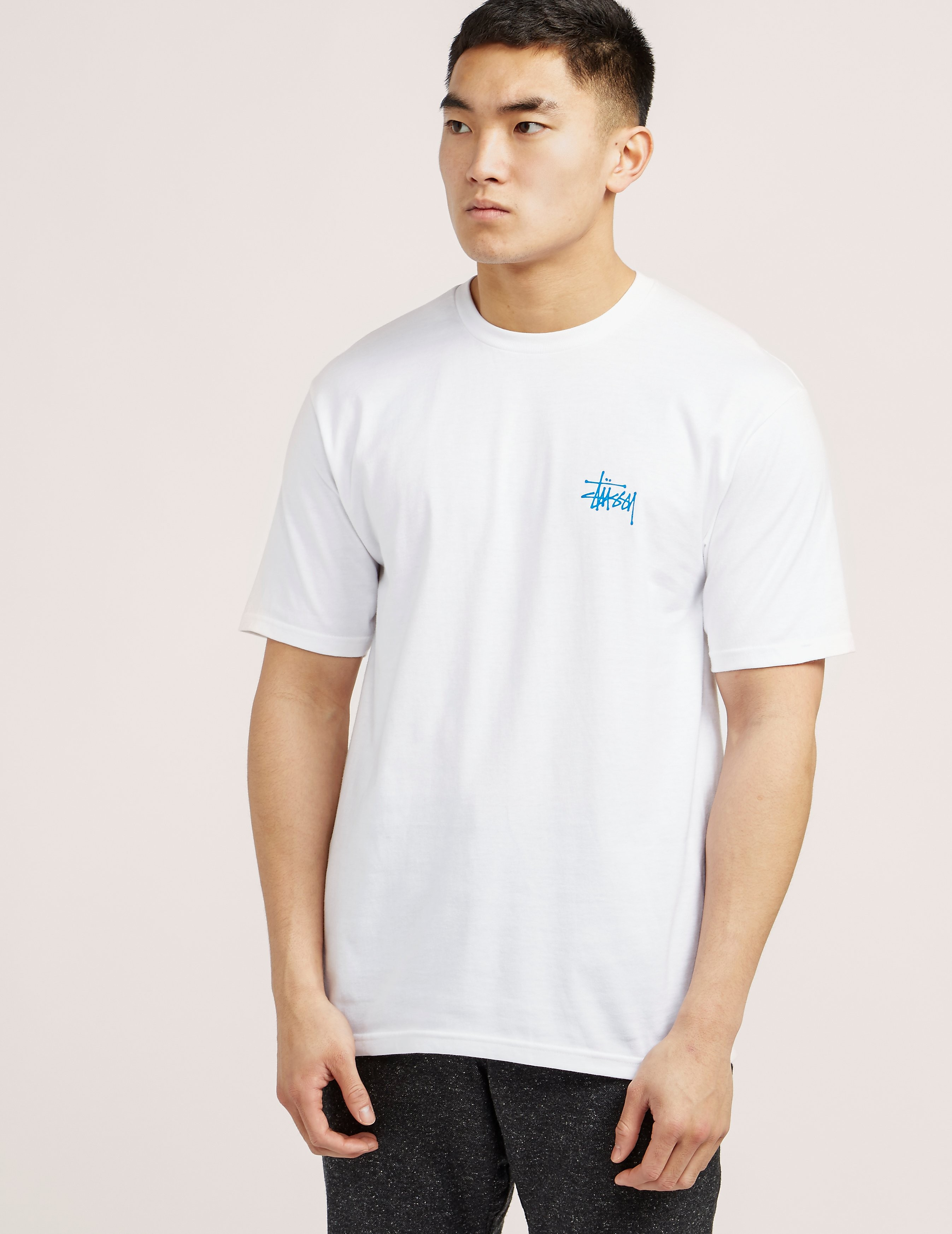 Stussy Basic Short Sleeve T-Shirt