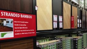 Bamboo Video Image